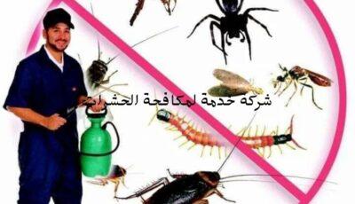 أفضل الطرق للقضاء على الحشرات