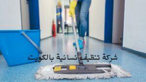 شركة تنظيف شقق بالكويت